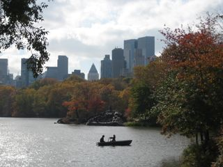 New york fall 011